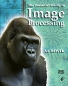 The Essential Guide to Image Processing by Alan C. Bovik