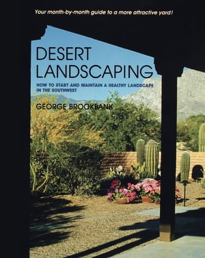 Desert Landscaping How to Start and Maintain a Healthy Landscape in the Southwest