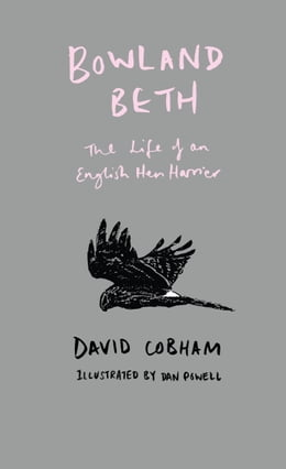 Book Bowland Beth: The Life of an English Hen Harrier by David Cobham