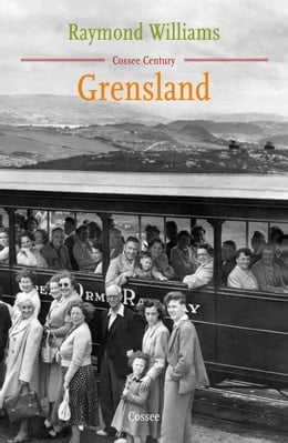 Book Grensland: roman by Raymond Williams