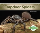 Trapdoor Spiders by Claire Archer