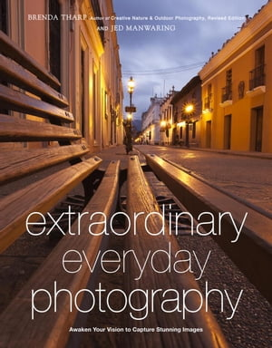 Extraordinary Everyday Photography Awaken Your Vision to Create Stunning Images Wherever You Are