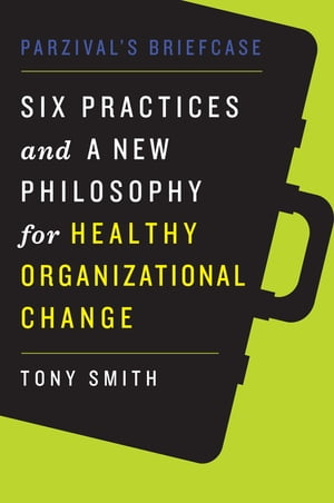 Parzival's Briefcase Six Practices and a New Philosophy for Healthy Organizational Change