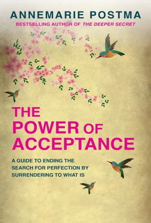 The Power of Acceptance: End the Eternal search for happiness by accepting what is by Annemarie Postma