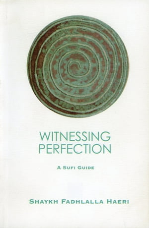 Witnessing Perfection A Sufi Guide