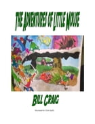 The Adventures of Little Mouse by Bill Craig