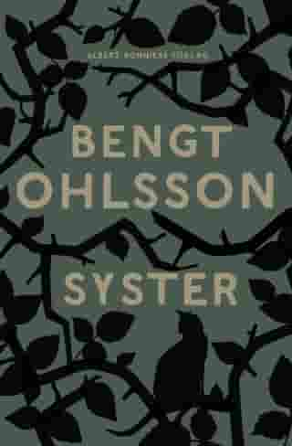 Syster by Bengt Ohlsson