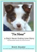 I'm Home! a Dog's Never Ending Love Story- Animal Life After Death -Dog Heaven, Dog's purpose for reincarnation, animal soul contracts 6679cf98-1c96-43aa-92f4-7eac6cf8b44e