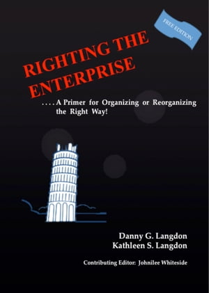 Righting The Enterprise: A Primer for Organizing or Reorganizing the Right Way