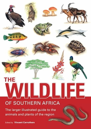 The Wildlife of Southern Africa