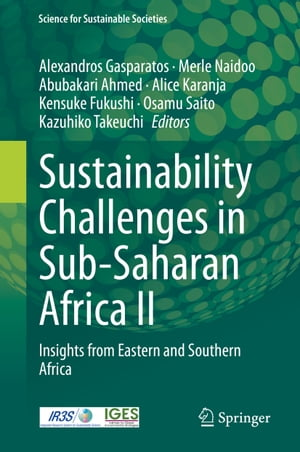 Sustainability Challenges in Sub-Saharan Africa II: Insights from Eastern and Southern Africa by Alexandros Gasparatos