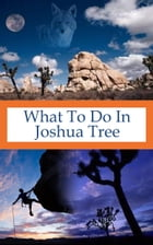 What To Do In Joshua Tree by Richard Hauser