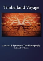 Timberland Voyage Abstract & Symmetry Tree Art Photography by John D Williams