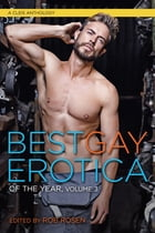 Best Gay Erotica of the Year, Volume 3 by Rob Rosen