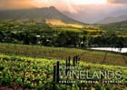 Picturesque Winelands by Tanya Farber