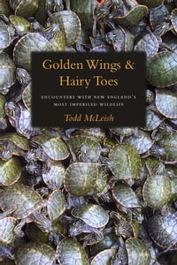 Golden Wings & Hairy Toes: Encounters with New England's Most Imperiled Wildlife