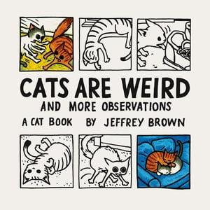 Cats Are Weird And More Observations