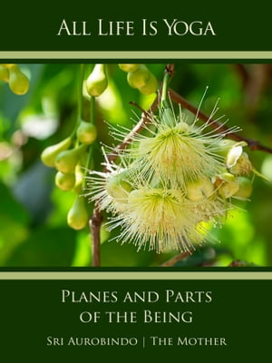 All Life Is Yoga: Planes and Parts of the Being