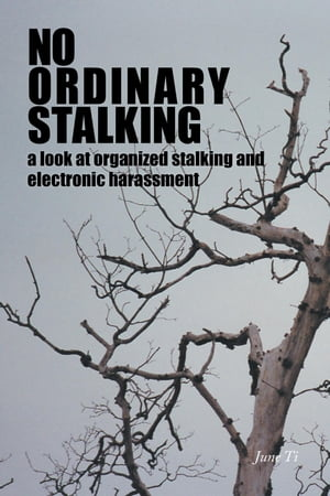 No Ordinary Stalking: a look at organized stalking and electronic harassment by June Ti