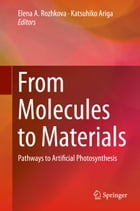 From Molecules to Materials: Pathways to Artificial Photosynthesis