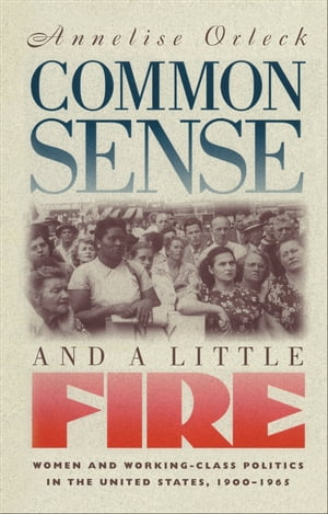 Common Sense and a Little Fire Women and Working-Class Politics in the United States,  1900-1965