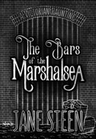 The Bars of the Marshalsea: A Victorian Haunting by Jane Steen