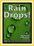 Just Rain Drop Photos! Big Book of Photographs & Pictures of Water Rain Drops, Vol. 1 by Big Book of Photos