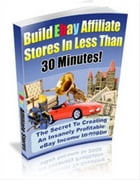 Build eBay Affiliate Stores by SoftTech