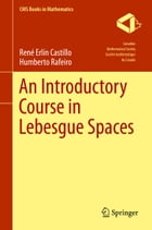 An Introductory Course in Lebesgue Spaces by Rene Erlin Castillo
