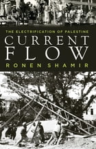 Current Flow: The Electrification of Palestine by Ronen Shamir