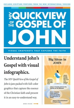 Book NIV, QuickView of the Gospel of John, eBook by Christopher D. Hudson