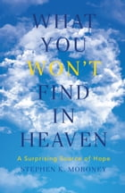 What You WON'T Find in Heaven: A Surprising Source of Hope by Stephen K. Moroney