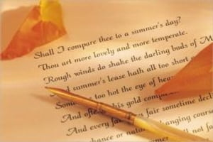 How to Write a Sonnet by Rob Walters