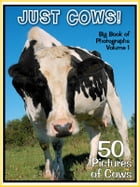 50 Pictures: Just Cows! Big Book of Bovine Photographs, Vol. 1 by Big Book of Photos
