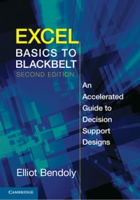 Excel Basics to Blackbelt: An Accelerated Guide to Decision Support Designs