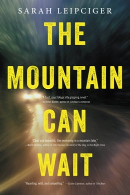 Book The Mountain Can Wait by Sarah Leipciger
