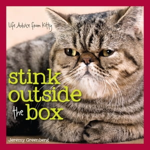 Stink Outside the Box: Life Advice from Kitty by Jeremy Greenberg
