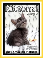 Just Kitten Photos! Big Book of Photographs & Pictures of Baby Cats & Cat Kittens, Vol. 2 by Big Book of Photos