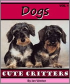 Dogs - Volume 1: A Photo Collection of Cute & Cuddly Dogs by Jen Weston