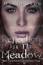 Reflection In The Meadow: The Mirror In The Forest Trilogy, #2 by B. Groves