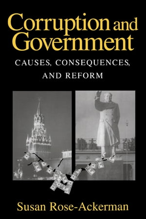 Corruption and Government Causes,  Consequences,  and Reform