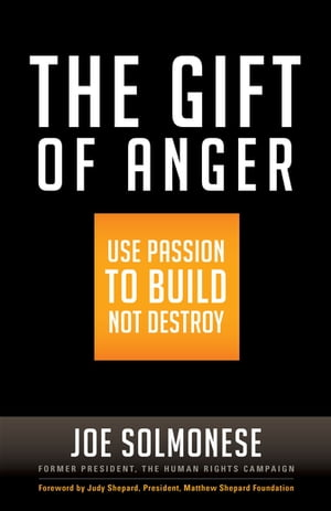 The Gift of Anger: Use Passion to Build Not Destroy by Joe Solmonese