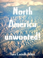 Another way to see North America by Tara Castelli Felice