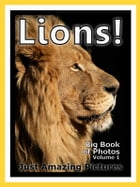Just Lion Photos! Big Book of Photographs & Pictures of Lions, King of the Jungle Animals, Vol. 1 by Big Book of Photos