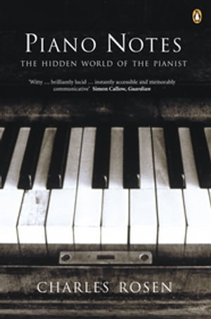 Piano Notes The Hidden World of the Pianist