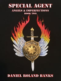 Special Agent Angels & Imperfections Book Two