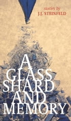 A Glass Shard and Memory by J. J. Steinfeld