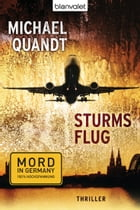 Sturms Flug: Thriller by Michael Quandt