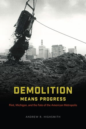 Demolition Means Progress Flint,  Michigan,  and the Fate of the American Metropolis