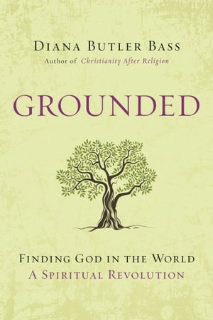 Grounded Finding God in the World-A Spiritual Revolution